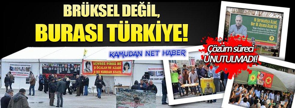 Brüksel'deki çadıra kızanlar... Bakın Türkiye'de neler olmuştu!